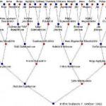Iceland's family tree