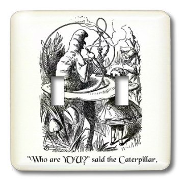 alice in wonderland essay identity In the novel alice's adventures in wonderland by lewis carroll, the protagonist   in this essay, i will examine alice's emotional and intellectual phases in her.