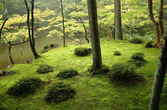 Moss Garden of Saiho-ji