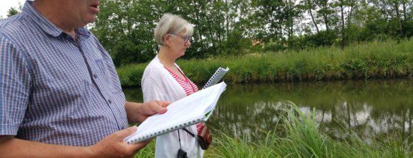 "Beyond ""In Flanders Fields"": Seeing WWI Poetry Anew"