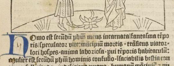 Medieval Stories, Modern Pilgrimages