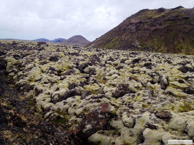 photo 2_lava fields